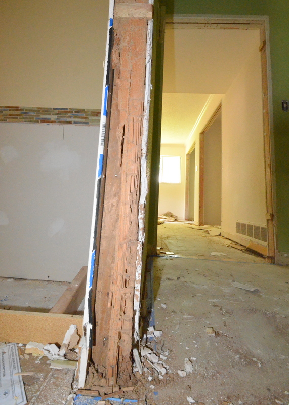 This is what's left of one of the studs at what was the doorway to bath 2. The wood is gone.