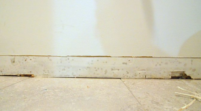 When the drain line under the mudroom bath backs up …
